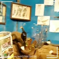 موزه تنوع زیستی و فرهنگی سمیرم