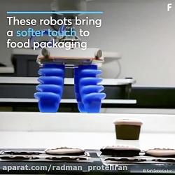 بازوی رباتیک کاربردی ب...