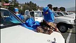 حماسه آفرینی ارتش در کرمانشاه