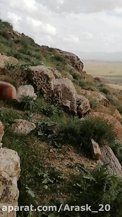 استاد ارسک و گنج های ایران زمین
