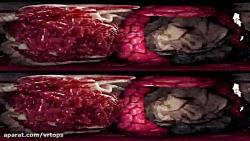 فیلم واقعیت مجازی سفر به درون بدن 2