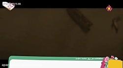 انیمیشن چگونه اژدهای خود را آموزش بدهید   انیمیشن سینمایی   دوبله فارسی