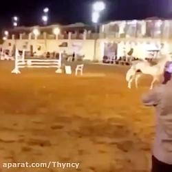 اسب آدمخوار دیده بودید؟