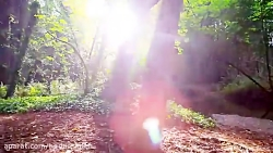 طبیعت زیبا با آهنگ آرام...