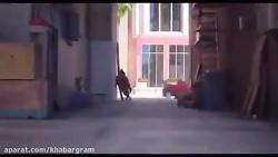 ویدئو سرگرمی