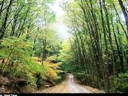 زیبایی های طبیعت با صدا...