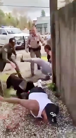 سگ های وحشی پلیس آمریکا...