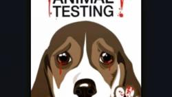 کمپین حمایت از حیوانات ...