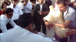 مراسم عروسی همراه با سن...