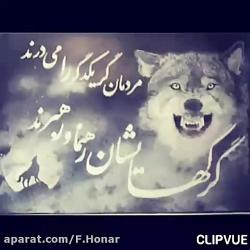 گرگ درون