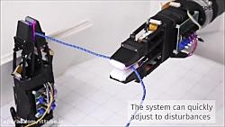 رباتی که به راحتی با سی...