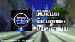 (Sonic Adveture 2 Live and learn (Nate wants to Battle cover