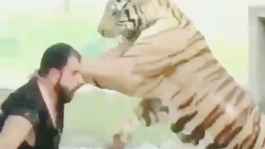 حمله ببر به انسان!!!
