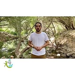 دفع سنگ کلیه مشکلات کلیه وکبدی _درمان با گیاهان دارویی