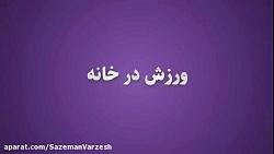 سازمان ورزش شهرداری تهران
