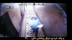 سایبری جهاد