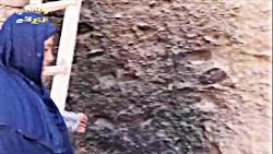کارآفرینی خانم بامیانی از کاشت سمارق در منزل