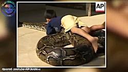 بچه هایی که حیوانات خانگی باور نکردنی ای دارند!