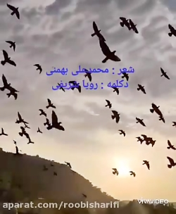 زیباترین دکلمه احساسی و عاشقانه توسط رویا شریفی شعر از محمدعلی بهمنی