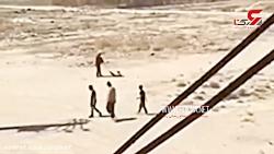 پلیس به دنبال سگآزار سنگدل در رباط کریم + فیلم