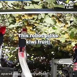 ربات میوه چین به دنبال کیوی Robotic AgriTech