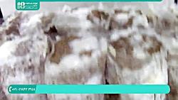 آموزش تولید قارچ خوراکی | پرورش قارچ (پوشش برای افزایش قارچ)