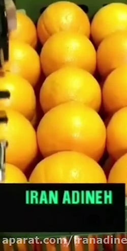 دستگاه لیبل زن میوه