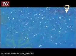 باب اسفنجی جدید - باب اسفنجی دوبله فارسی - انیمیشن باب اسفنجی - اسفنجی باب