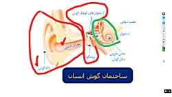 تدریس دبیران سفیدسافت فصل 5 علوم هشتم /ش1/مدرس: محمد محبی/