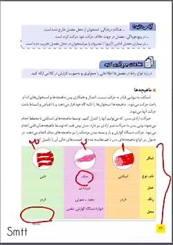 تدریس صفحه ۴۲ ماهیچه علوم هشتم محمودطباطبایی