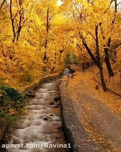 فصل زیبای پاییز
