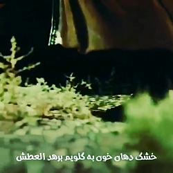 آهنگ محسن چاوشی واقعا د...