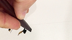 سرمشق با قلم نی