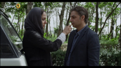 اکران آنلاین سینمایی ناگهان درخت