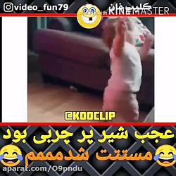 طنز دنبال=دنبال