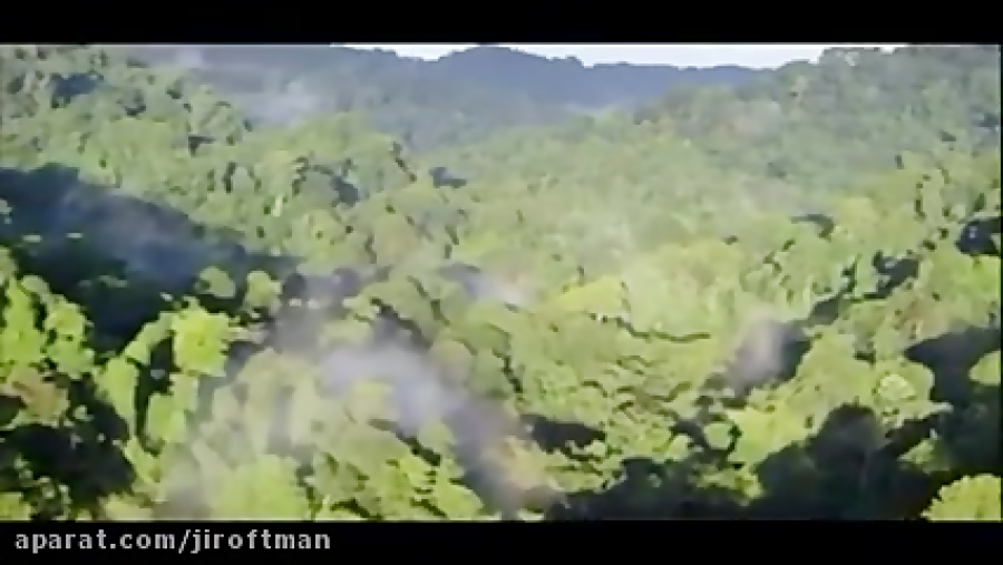 تلاوت قرآن توسط عبدالباسط