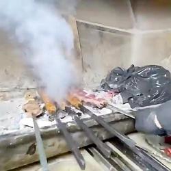 آموزش و معرفی غذا های ایرانی و خارجی
