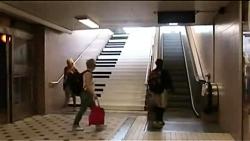 پله یا پله برقی؟