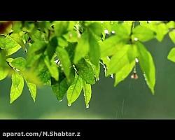 M.Shabtar.z