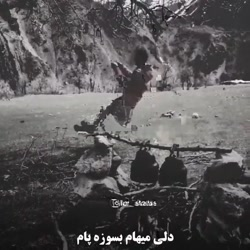 farzadjahangiri