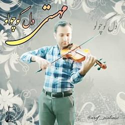 @aref_violinist