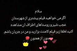 mohadeseh