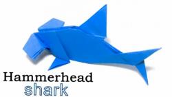 آموزش اوریگامی : اوریگامی کوسه سرچکشی