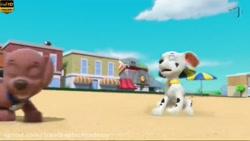 دانلود انیمیشن سگهای ن...