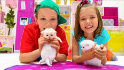 مکس و کتی گربه های جدید پیدا می کنند