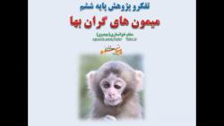 تفکر و پژوهش پایه ششم ، داستان میمون های گران بها