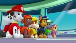 دانلود کارتون سگهای نگهبان / سگهای نگهبان جدید / انیمیشن سگهای نگهبان قسمت ۲۱