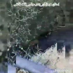 صنایع شیمیایی خلیج فارس