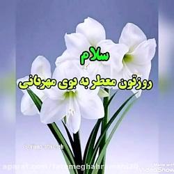 fatemeghahramani20