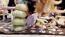 باربی ها و صدف های جزیره لاوان